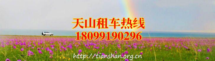 新疆租车 新疆包车 新疆拼车 新疆自驾车 新疆自由行